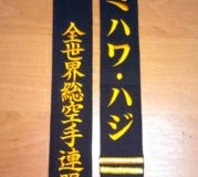 Daihido-Kyokushin-Black-Belts-Color (18)